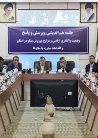 گزارش تصویری : نشست خبری معاون هماهنگی امور اقتصادی استانداری هرمزگان