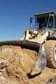 رفع تصرف ۵ هکتار از زمینهای ملی در بستک