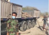 کشف و توقیف ۲ محموله ۵۰ تنی چوب غیرمجاز در شهرستان بندرعباس
