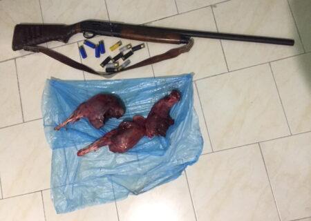 دستگیری سه نفرمتخلف شکاروصید درشهرستان بندرلنگه